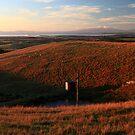 Hoddle range - South Gippsland by Tony Middleton