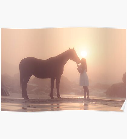Sunkissed dreams of horses Poster