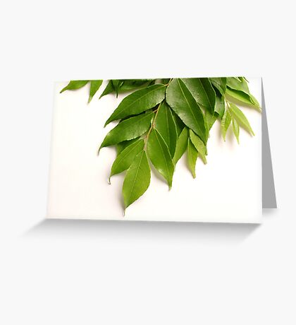 Curry Leaves Greeting Card