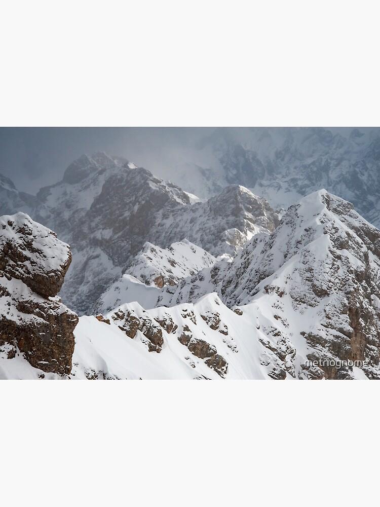Desierto alpino de metriognome