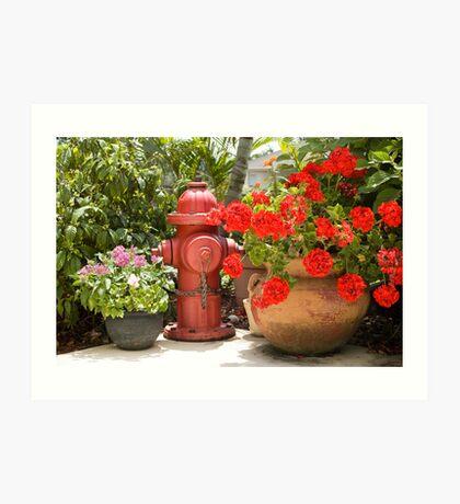 Garden Hydrant Art Print