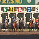 And the Starting Gates are Open! by Buckwhite