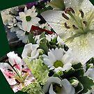 Weiße Freude - Floral Collage von BlueMoonRose