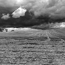 A winner-Storm Approaching B&W by GailD