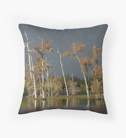 Lull Before the Storm Throw Pillow