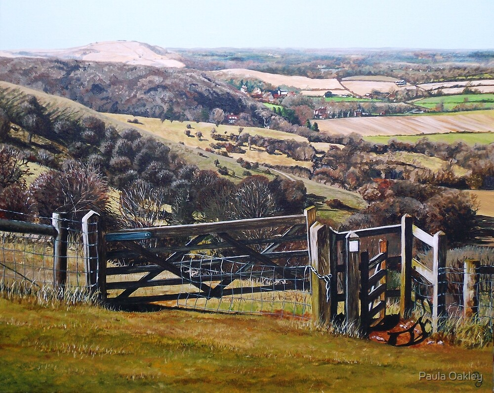 The South Downs Way by Paula Oakley