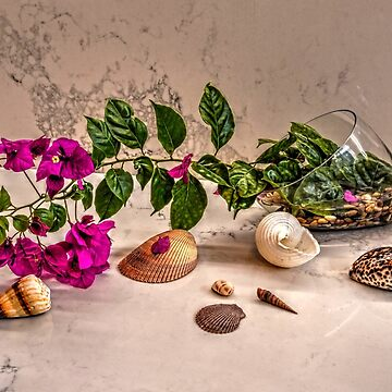 Still life with purple bougainvillea by andreisky