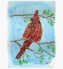 Cardinal on snowy day Poster