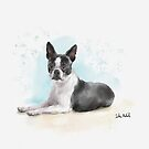 Watercolor Sketch of a Black and White Boston Terrier Lying Down by ibadishi