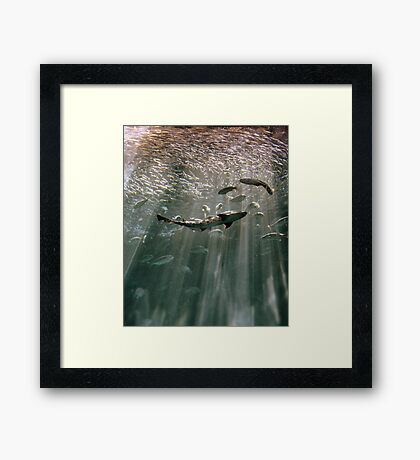 Deep Secret Framed Print