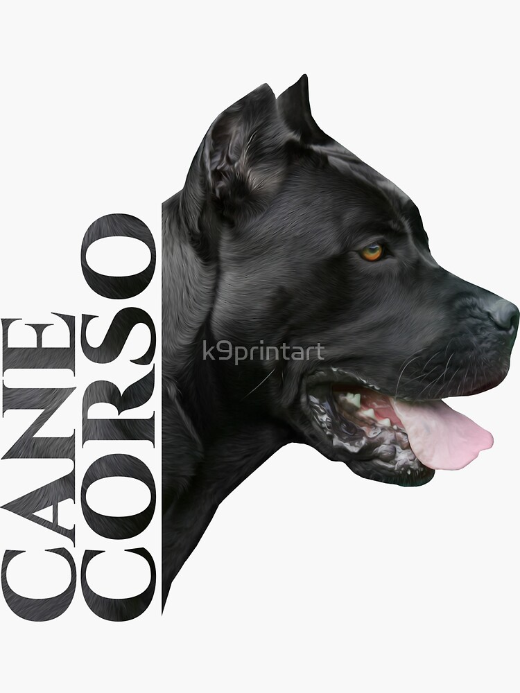 Cane Corso Italian Mastiff Sticker By K9printart Redbubble