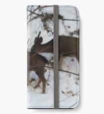 Deer in snow iPhone Wallet/Case/Skin