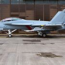 Super Hornet posing by Chris Ayre