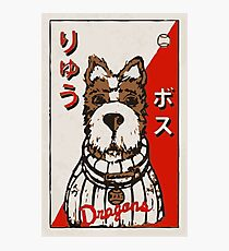 Isle of Dogs - Boss Baseball Card Photographic Print