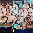 Winter Bike | Montréal Québec Canada by Thomas Bock