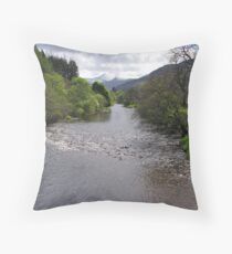 Along the River Broom Throw Pillow