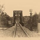 Rail Track in Sepia by Sharon Brown