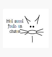 Dessin de chaton Impression photo