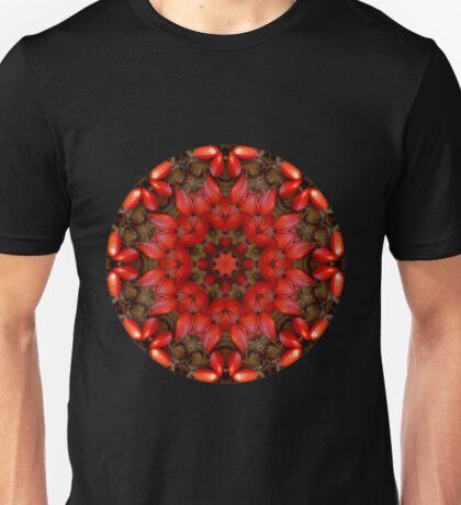Red Kaleidoscope #1 T-Shirt