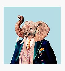 Elephant Blue Photographic Print
