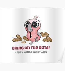 Happy Wings Sanctuary: BoBae Poster