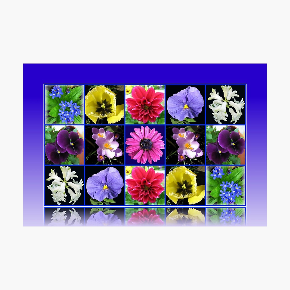 Voices of Spring - Floral Collage in Blue Reflection Frame Fotodruck