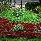 Flower Garden by Linda Miller Gesualdo