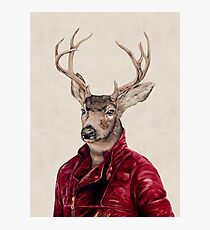 Deer In Leather Photographic Print