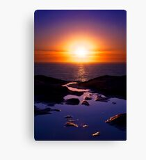 To Take This Path Canvas Print