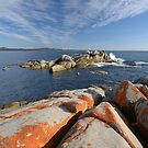 Bay of Fires Tasmania by quentinjlang