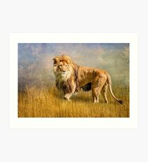 King of The Serengeti Art Print