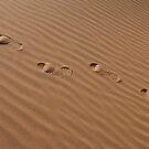 Desert by AravindTeki