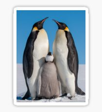 Emperor Penguins and Chick - Snow Hill Island Sticker