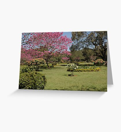 Cubbon Park, Bangaluru Greeting Card