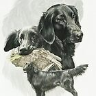 Flat-coated Retriever Medley by BarbBarcikKeith