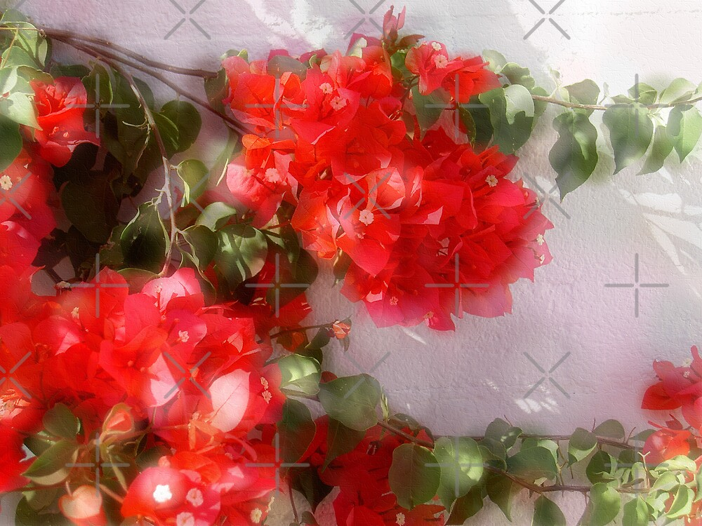 Red Romance by CarolM