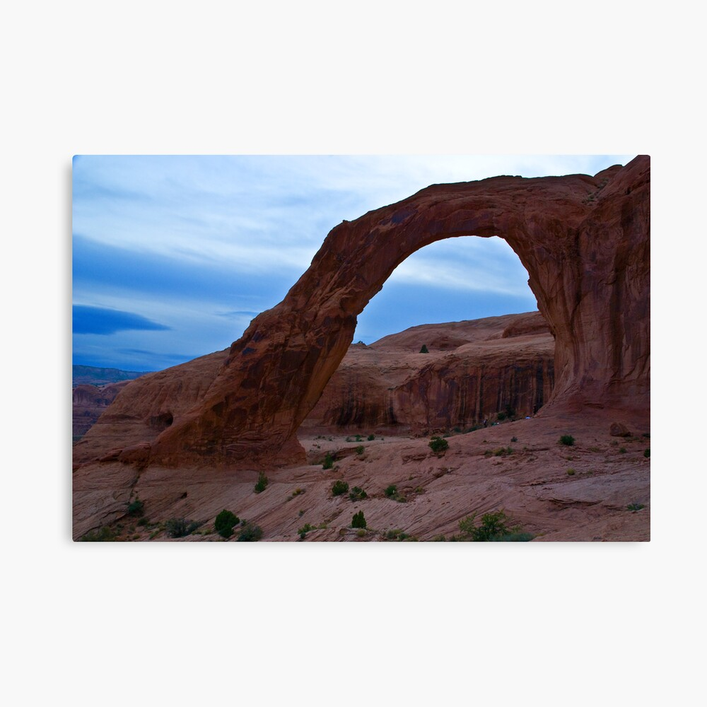 Looking West Canvas Print