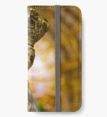 Our Lady of Fatima iPhone Wallet/Case/Skin