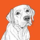 Labrador ( Orange version )  by Adam Regester