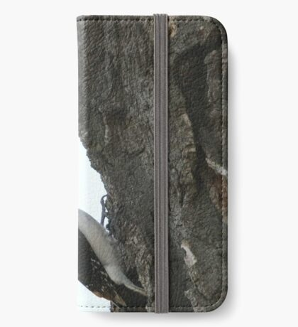 Hairy Woodpecker iPhone Wallet