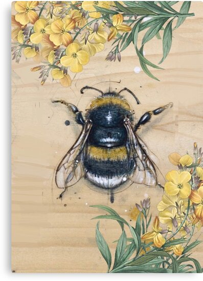 Vintage Honey Bee Anatomy Design With Daisies Canvas Prints By