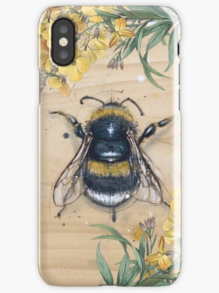Vintage honey bee anatomy design with daisies \