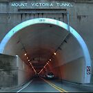 Mt.Victoria Tunnell. by Larry Lingard-Davis