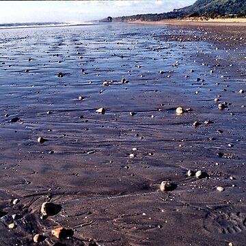 sand stones. punakaiki, aotearoa by bodhiimages