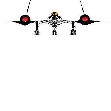 SR-71 Blackbird by randomarthouse