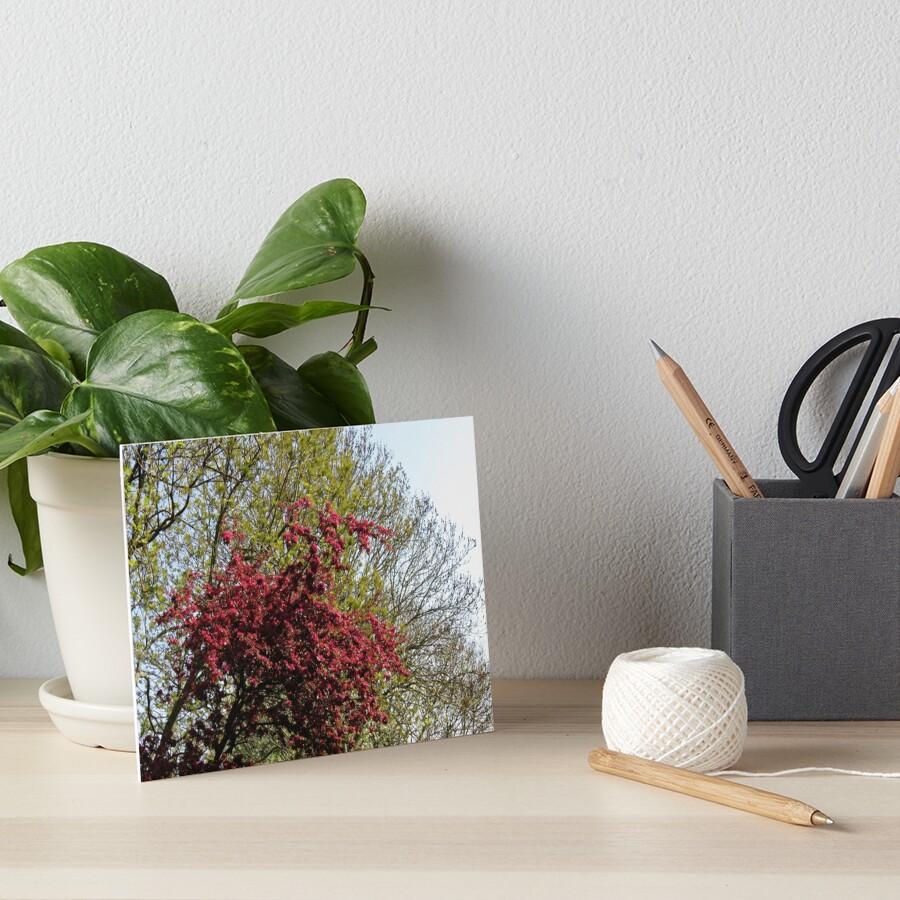 Baum mit roten Blüten Galeriedruck