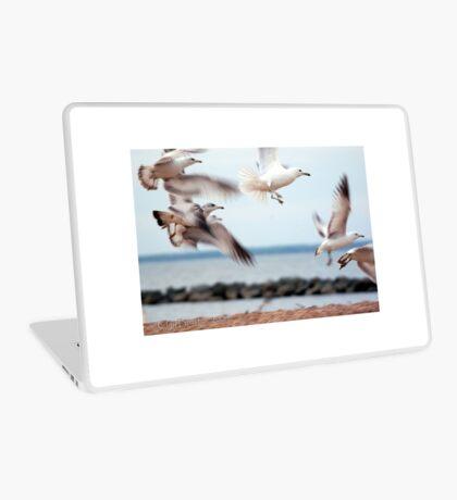 Seagulls Laptop Skin