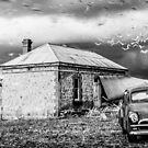 FJ - pulling the birds by Dave  Hartley