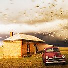 Flocking in by Dave  Hartley