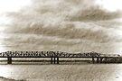 The Old Memphis Bridge by Terri Chandler